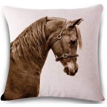 padjapüür hobune