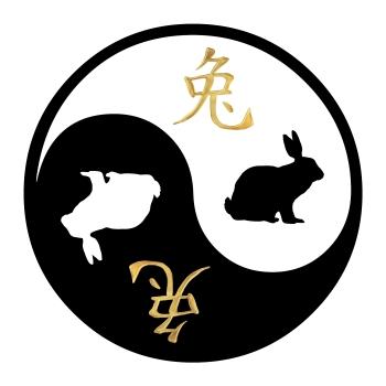 yin-yang, janes