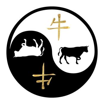 yin-yang, pyhvel
