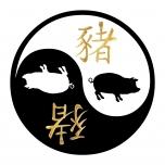 Kleeps Yin-Yang Siga
